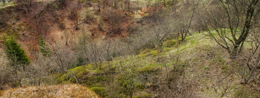 Mining landscape Komáří hůrka hill - large pit