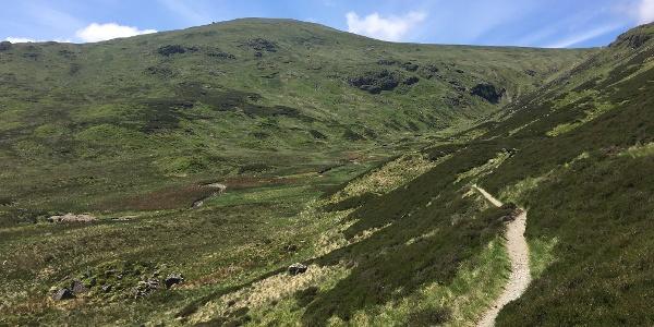 Trail along Greenside