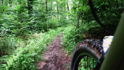 Trail Richtung großer Stern