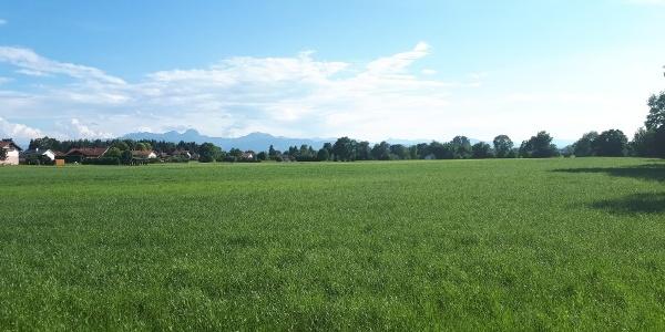 Via Julia bei Großkarolinenfeld mit Blick auf die Alpenkette