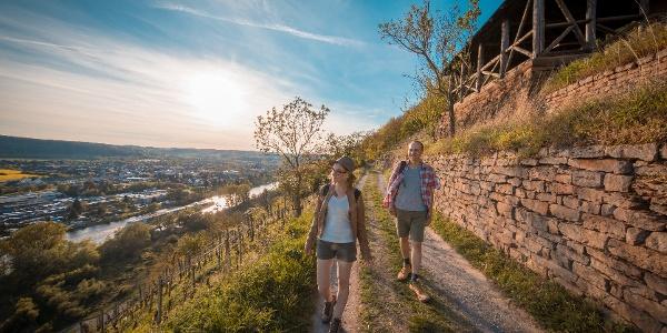 Etappe 4 von Erlenbach nach Klingenberg
