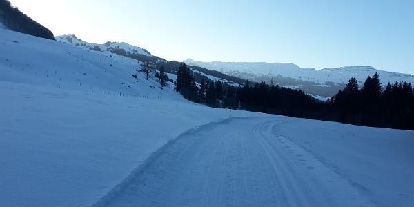 Die Langlaufloipe Dorf mit Sicht auf die Schrattenfluh