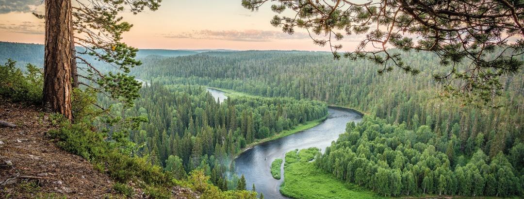 Kitkajoki river