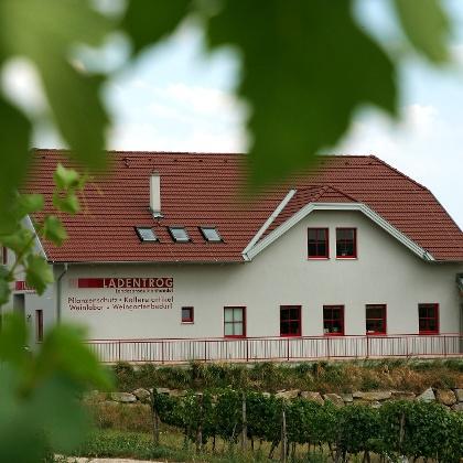 Weingut Ladentrog