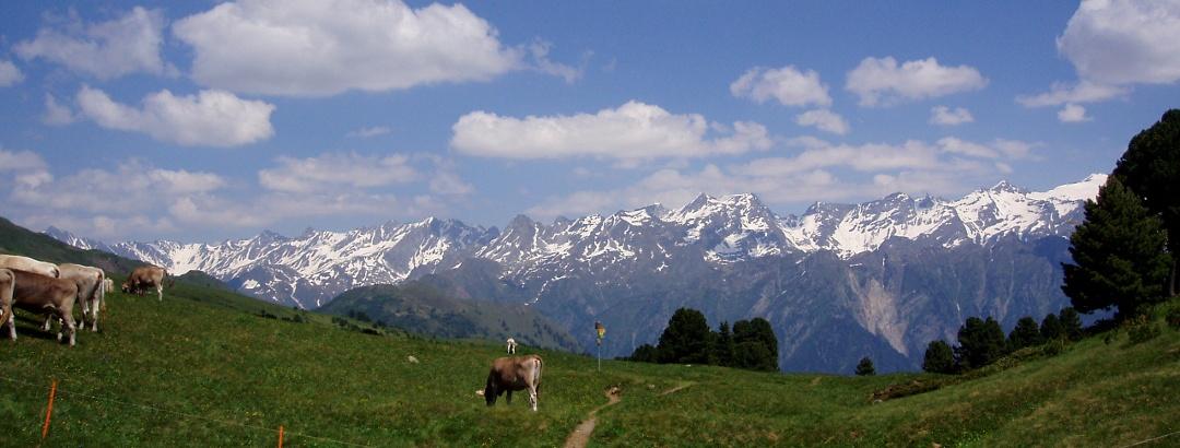 Blick auf die Berge der Adula-Gruppe