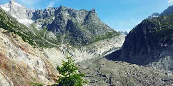 Glacier «Fieschergletscher»