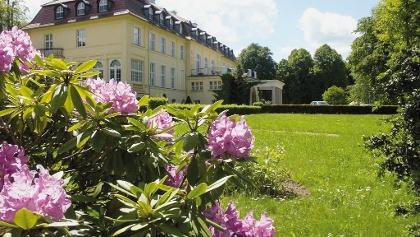 Rhododendronblüte am Schloss Hasenwinkel
