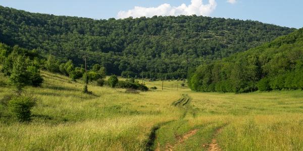 A Szelce-völgyben