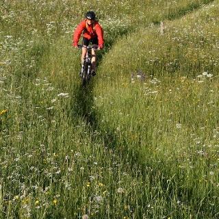 Bike-Tour Malfeis