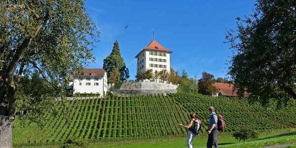 Wanderer vor dem Schloss Heidegg