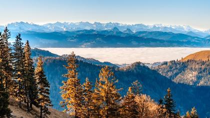Blick aufs Nebelmeer, Strahlegg