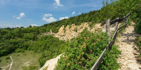 A Mátyás-hegy kőfejtőjének peremén