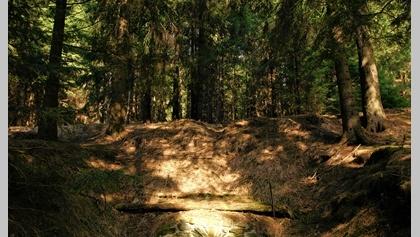 Mining landscape Zlatý Kopec /Kaff - Johannes adit