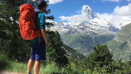 The Matterhorn from the forest