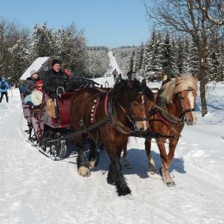 Pferdeschlittenfahrt im verschneiten Winterwald