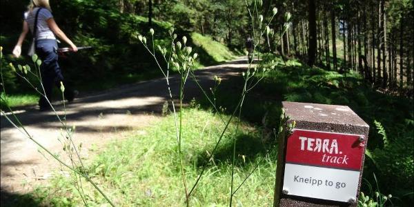 Kneipp to go - Terra.track bei Bad Iburg