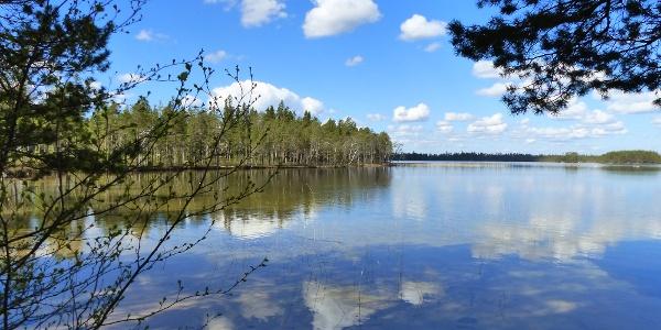 Valkeisjärven kierros, Lestijärvi