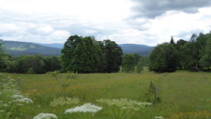 Landschaft bei České Žleby