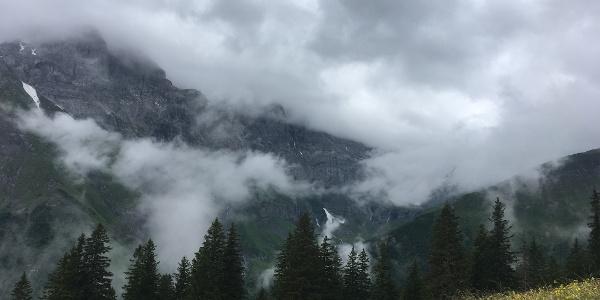 Sweeping mist