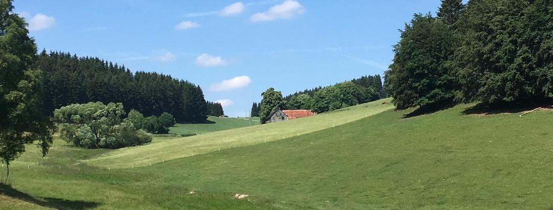 Blick auf Hof Rüsselsbach