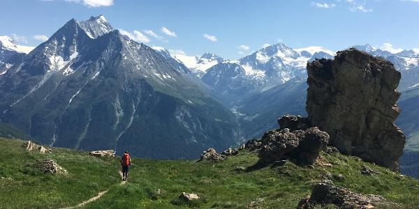 Alpine meadows on the descent to Les Hauderes
