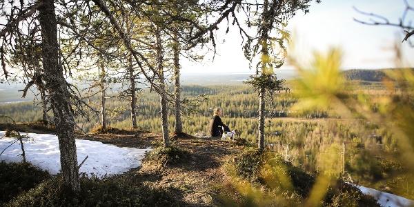Konttainen fell top along Karhunkierros Trail in Ruka, Kuusamo