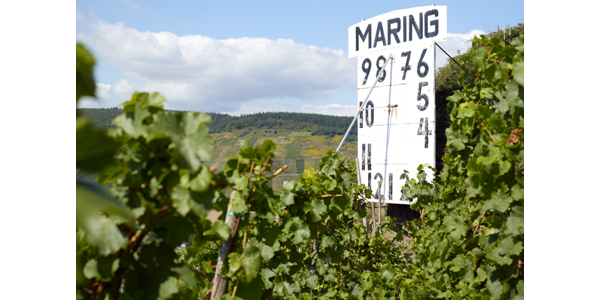 Sonnenuhr im Weinort Maring-Noviand