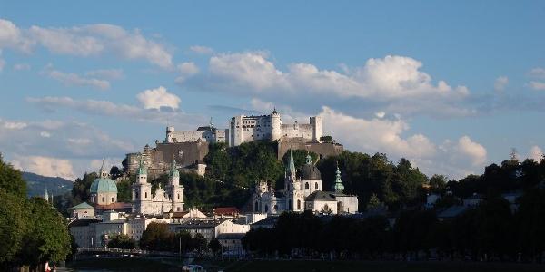 Der Festungsberg im Sommer 2008
