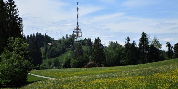 Blick zurück auf den Gipfel des Pfänders links vom Sendeturm