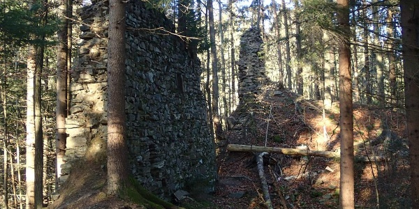 Ruine Neu Leonroth