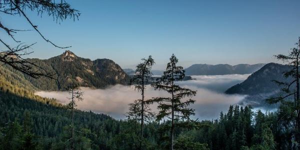 Blick vom Schafwald nach Wildalpen