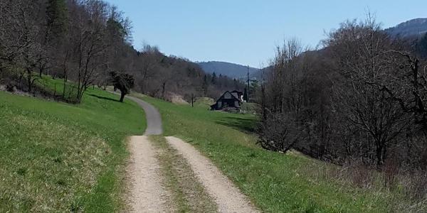 Landstrasse Richtung Hauenstein