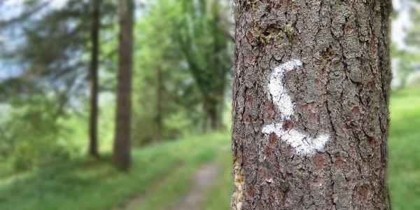 The distinctive Lechweg Trail markings