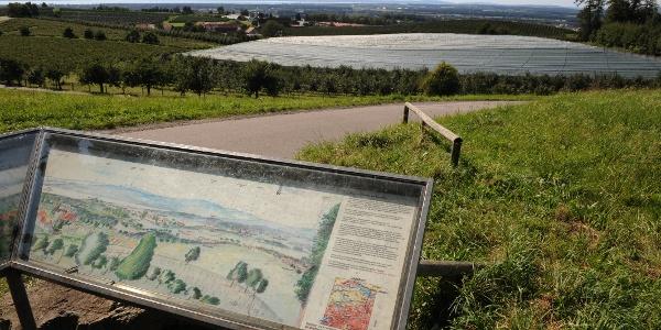 Aussichtspunkt auf dem Hopfenpfad