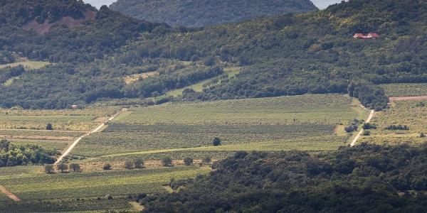 A Csobánc, tetején a várral, az Eötvös Károly-kilátóból