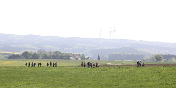 Wandergruppe bei Boxberg_Lieserpfad: Etappe 1: Boxberg-Daun