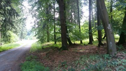 Bückebergweg II