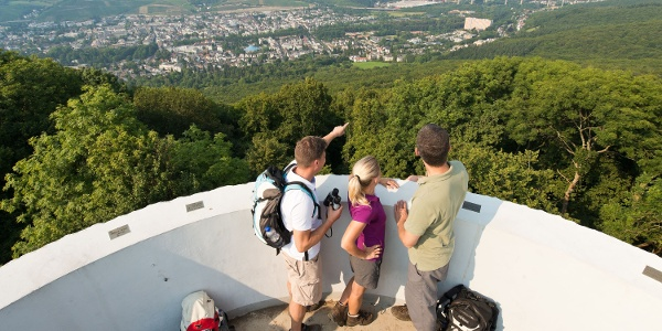 Neuenahrer Berg