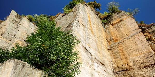 Römischer Steinbruch auf dem Weg