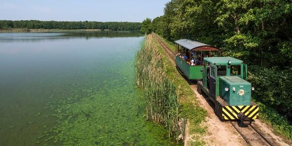Délelőtti vonat a Búsvári-tó partján