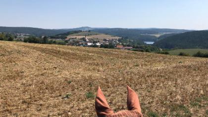 Ausblick über Trausnitz mit Stausee