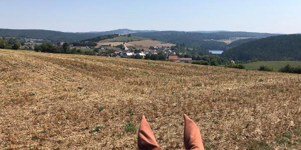 Blick über Trausnitz und Stausee