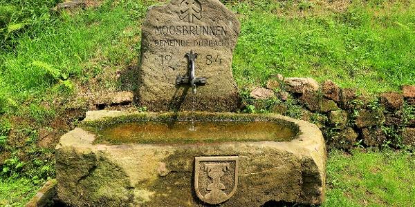 Moosbrunnen.