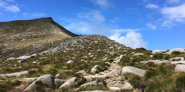 The ridge path looking towards Goat Fell's summit.