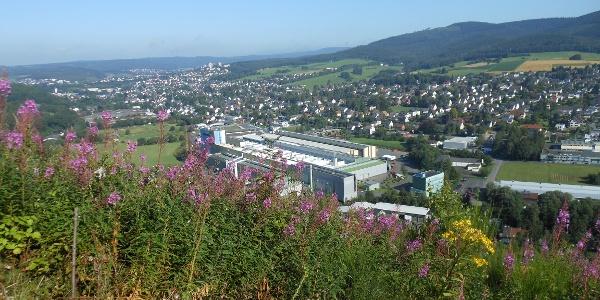 """Aussicht von der """"Panoramabank"""" auf das Ferndorftal"""