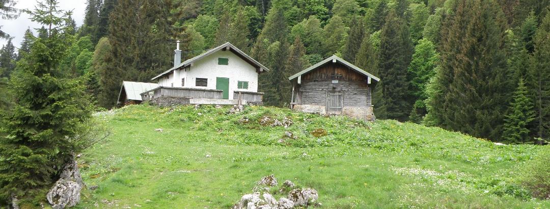 Vordere Krottenalm 1230m