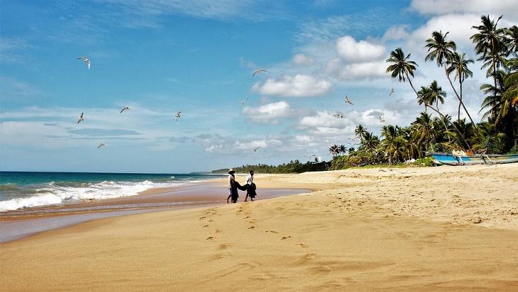 Die Küste