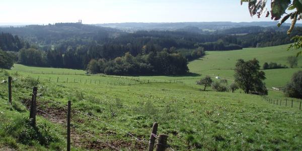 Eigenzell Blick zum Schönenberg