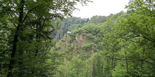 Blick auf die Schmitthütte_Vulkan-Pfad: Grafschaft-Pfad