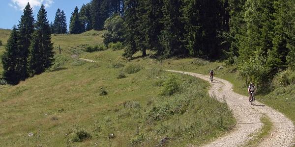 Abfahrt von der Ebenforstalm ins Reichraminger Hintergebirge